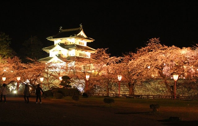 sakura-night-07