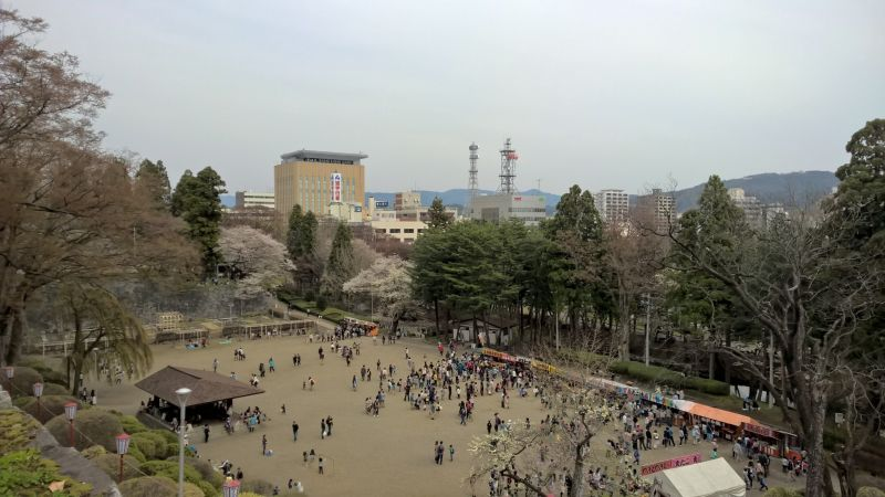 photo113850